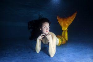 mermaid in a pool